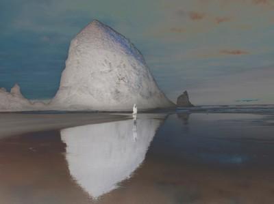 Artist I Love: Richard Misrach | S·B Long Interiors