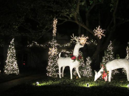 christmas decor dallas texas
