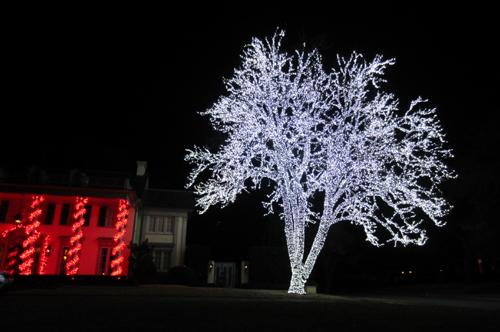 outdoor christmas decorations dallas tx